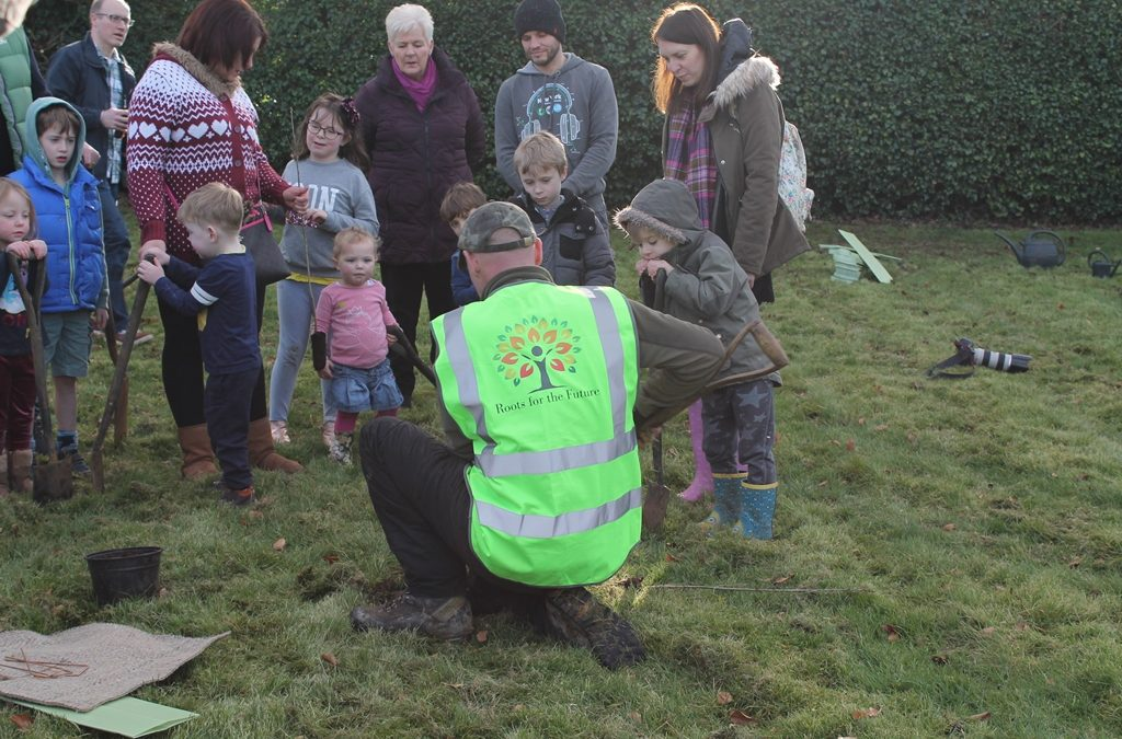 "Planting trees in ""Chippy Park"""