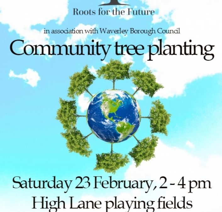 Haslemere! Come plant with us