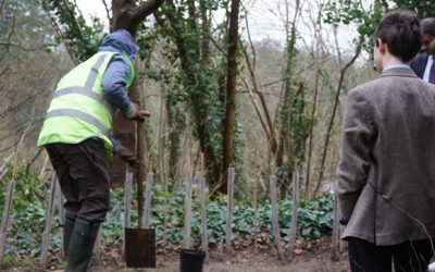 Hedgerows for the Future