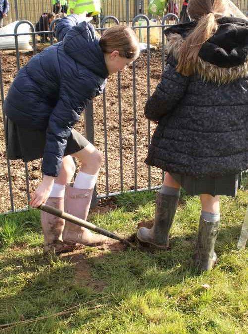 634 trees + 345 pupils = nature-based fun